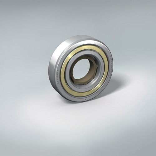 4 Point Contact Ball Bearing with outer-ring brass cage (QJ Series)